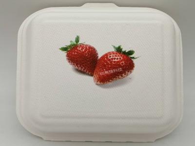 一次性可降解餐盒印刷